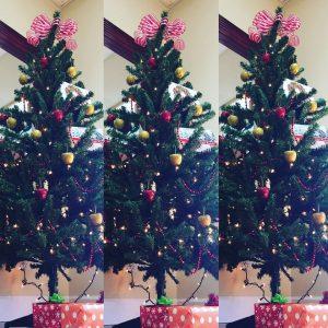 AYS Christmas Tree